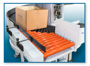 Induction conveyor for Ryson Multiple Entry and Exit Spiral Conveyors