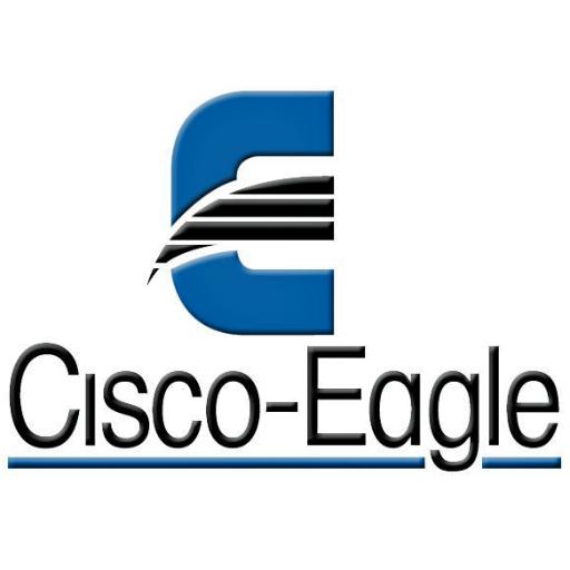 cisco eagle logo