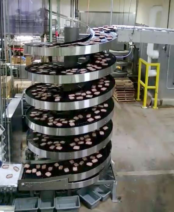 Ryson Freezer Spiral Conveyor